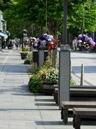 長野そぞろ歩き:善光寺門前を歩く - 日本庭園的生活