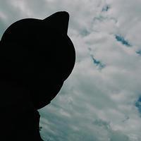 中野坂上 蓮池鍋島家菩提寺 成願寺18.05.19 13:50 - スナップ寅さんの「日々是口実」