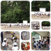 泥んこあそび(@^^)/ - ひのくま幼稚園のブログ