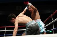 壁を突き破って力君。 - 本多ボクシングジムのSEXYジャーマネ日記