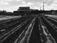 武蔵野 - Bibury Court Blog