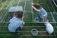 お庭で楽しむいとこ達との夕べ ~Ritter sind da!~ - チーム名はファミリエ・ベア ~ハイジが記すクマ達との日々~