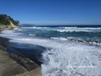 湘南の海を一望する「鎌倉海浜公園」 - イタリアワインのこころ