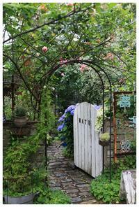 庭は紫陽花祭りです。 - natu     * 素敵なナチュラルガーデンから~*     福岡で庭造り、外構工事(エクステリア)をしてます