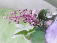 ご供花 - HANATSUDOI