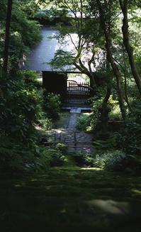 六月の妙法寺にて - またいつか旅に出る