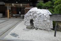 京都初めての一人旅・安井金毘羅宮から高台寺 - 月の旅人~美月ココの徒然日記~