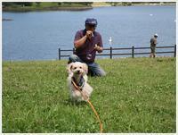 志高湖でたくさん遊んで大満足かな、さあ帰ろう!! - さくらおばちゃんの趣味悠遊