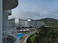 ツアーで沖縄、ついでに探蝶記(捌) - 不思議の森の迷い人