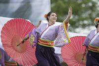 第15回犬山踊芸祭『静岡大学よさこいサークルお茶の子祭々』 - tamaranyのお散歩2