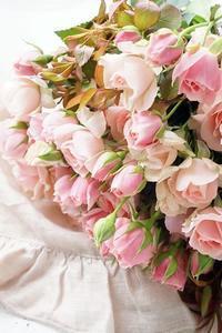 和ばらブーケでラブリーに若返る(^^♪ - お花に囲まれて