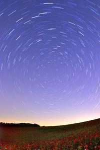 北天と天空のポピー畑2 2009 - 四季星彩