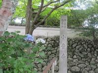 あじさい寺へ - 花の自由旋律