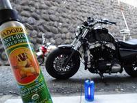 ムシコロつけてバイク磨き - EVOLUTION
