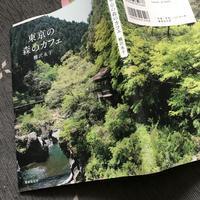 森のカフェ ぽっぽ 鳩ノ巣渓谷 - 虹を浴びる