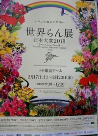 世界らん展日本大賞2018☆特別展示 - さんじゃらっと☆blog2