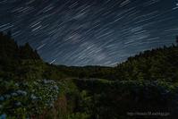 紫陽花と星の日周運動Ⅱ - デジタルで見ていた風景