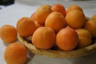 杏ジャム - ほのぼのはうす