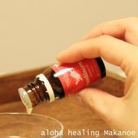 11/11(日)22(木)【はじめてアロマ講座】 - aloha healing Makanoe