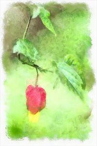 チロリアンランプ(ウキツリボク) 2 - 光 塗人 の デジタル フォト グラフィック アート (DIGITAL PHOTOGRAPHIC ARTWORKS)