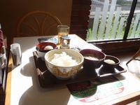 朝日が当たる 朝食 - 化石部の父