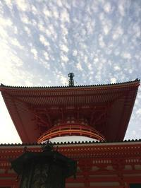弘法トレイル 記録 - For the RUSH's blog