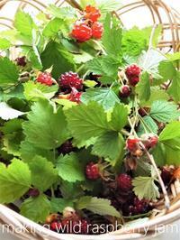 ワイルドラズベリー「苗代苺」のジャムづくり - serendipity blog
