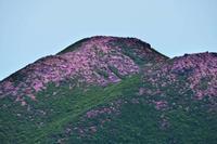九重共和国が桃色に染まる頃~2018年6月 九重連山登山 中岳+久住山 - 殿様な山歩き