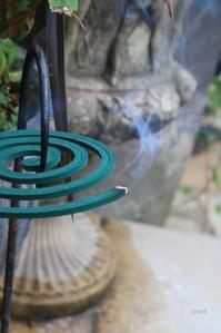 思いやりの蚊取り線香 - CHIROのお庭しごと