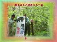 フォト575zrt2704『熊も出る戸隠道の木下闇』 - 老仁のハッピーライフ