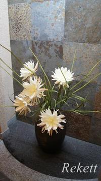 一夜限りの神秘の白い花~❤ - インテリア&ガーデンSHOP rekett