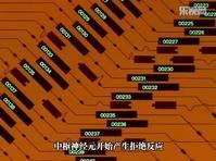 lunatic fest 2018: day 2 - CY(謎樣之暴走) - PaRaDoll