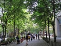 夏は緑、木陰が一番 - AREKORE