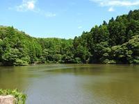夏にむかって - 千葉県いすみ環境と文化のさとセンター