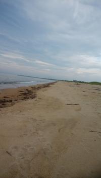 (山レポではありません)津市白塚海岸のキス釣り20108.06.28 - メガネぱぱの山歩き日記