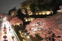 2018-04-03花見 - くのさんち