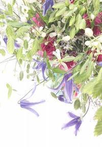 100本ネトワイエの小花のブーケ - お花に囲まれて