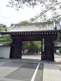 天授庵のお庭で青もみじを堪能 - mayumin blog 2