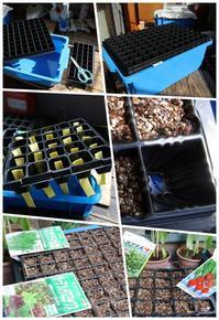 水耕栽培簡単装置 - ■■ Ainame60 たまたま日記 ■■