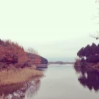 シュートと秋の田貫湖へ♪ - shoot !!
