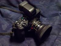 カメラ画像 - シセンのカナタ