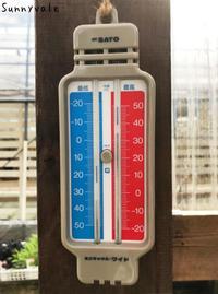 7月多肉植物の会のお知らせ - さにべるスタッフblog     -Sunny Day's Garden-