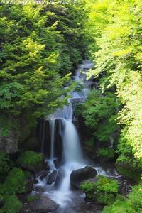 奥日光・竜頭の滝 - 四季彩の部屋Ⅱ