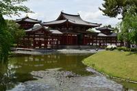 京都府宇治市の平等院鳳凰堂 - 近代建築写真室@東京