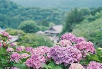 奈良県長谷寺 - photomo