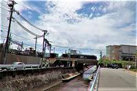 藤田八束のガーデニング、幸せな生き方@白とライトブルーの美しさアガパンサスの魅力、貨物列車の写真撮影は西宮も素敵です - 藤田八束の日記