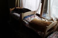 男子寮の朝 - ぎんネコ☆はうす