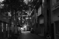 kaléidoscope dans mes yeux 2018 古町 #07 - Yoshi-A の写真の楽しみ