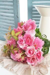 和ばらと筆リンパ、インドカレーに氷室饅頭(^^♪ - お花に囲まれて