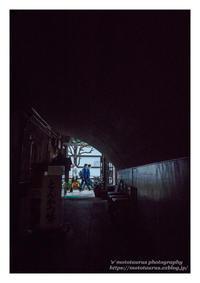 すれ違い - ♉ mototaurus photography